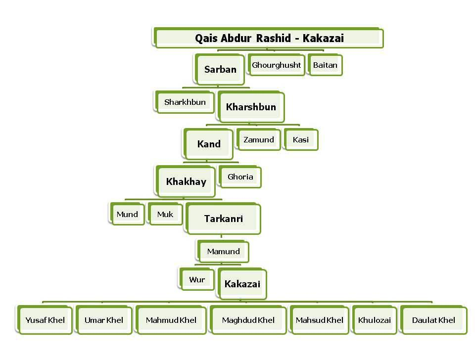 Kakazai Pashtun Family Tree in English